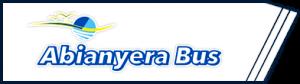logo_abianyerav2